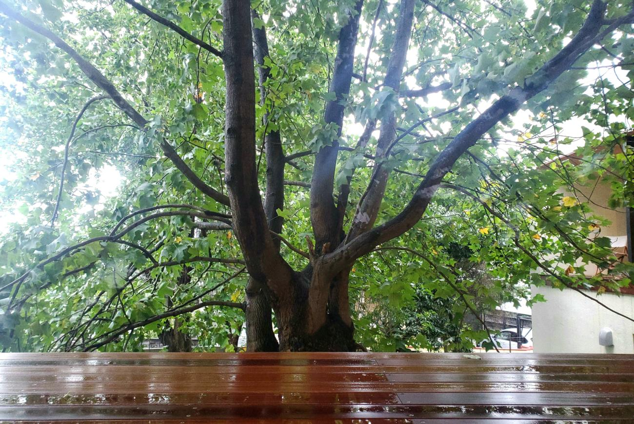 FACTORY 木